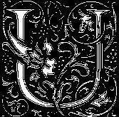 ชื่อที่ขึ้นต้นด้วยตัวอักษรภาษาอังกฤษ U สามารถทำนายความโรแมนติกของเพื่อนๆ ได้